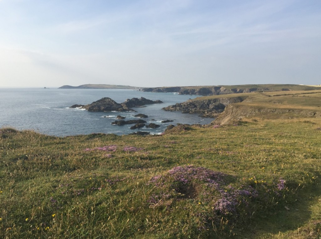 explore-cornwalls-rugged-coastline
